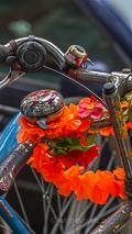 versierde fiets