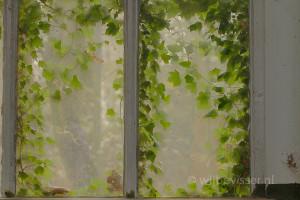 bladeren achterglas