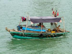 vissers familie